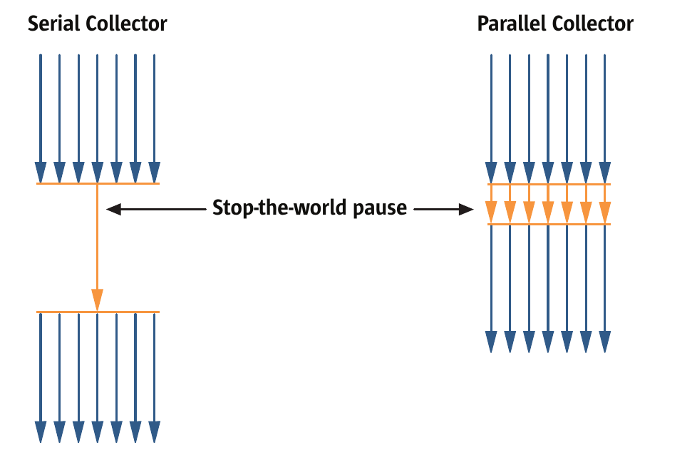 Comparison between serial and parallel young generation collection